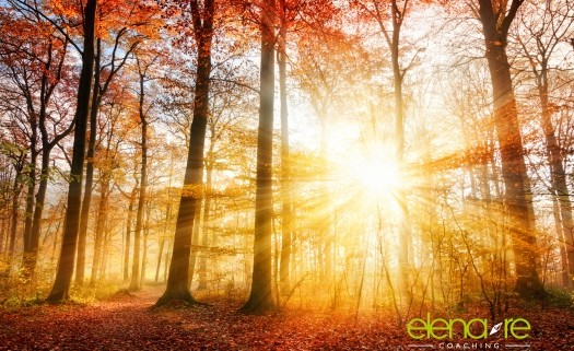 chiarezza - luce